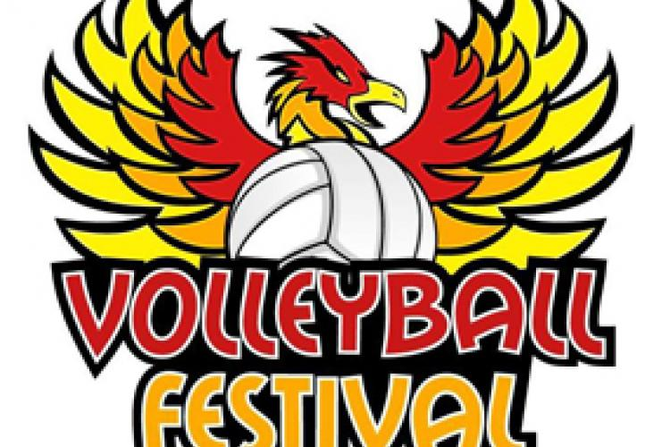 Volleyball Festival